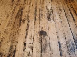 water-damaged-wood-floor-lincoln-ne