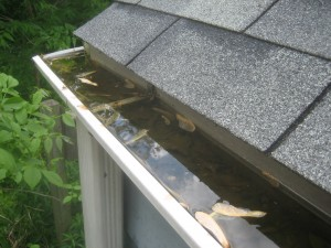 Clogged gutters can lead to serious water damage.