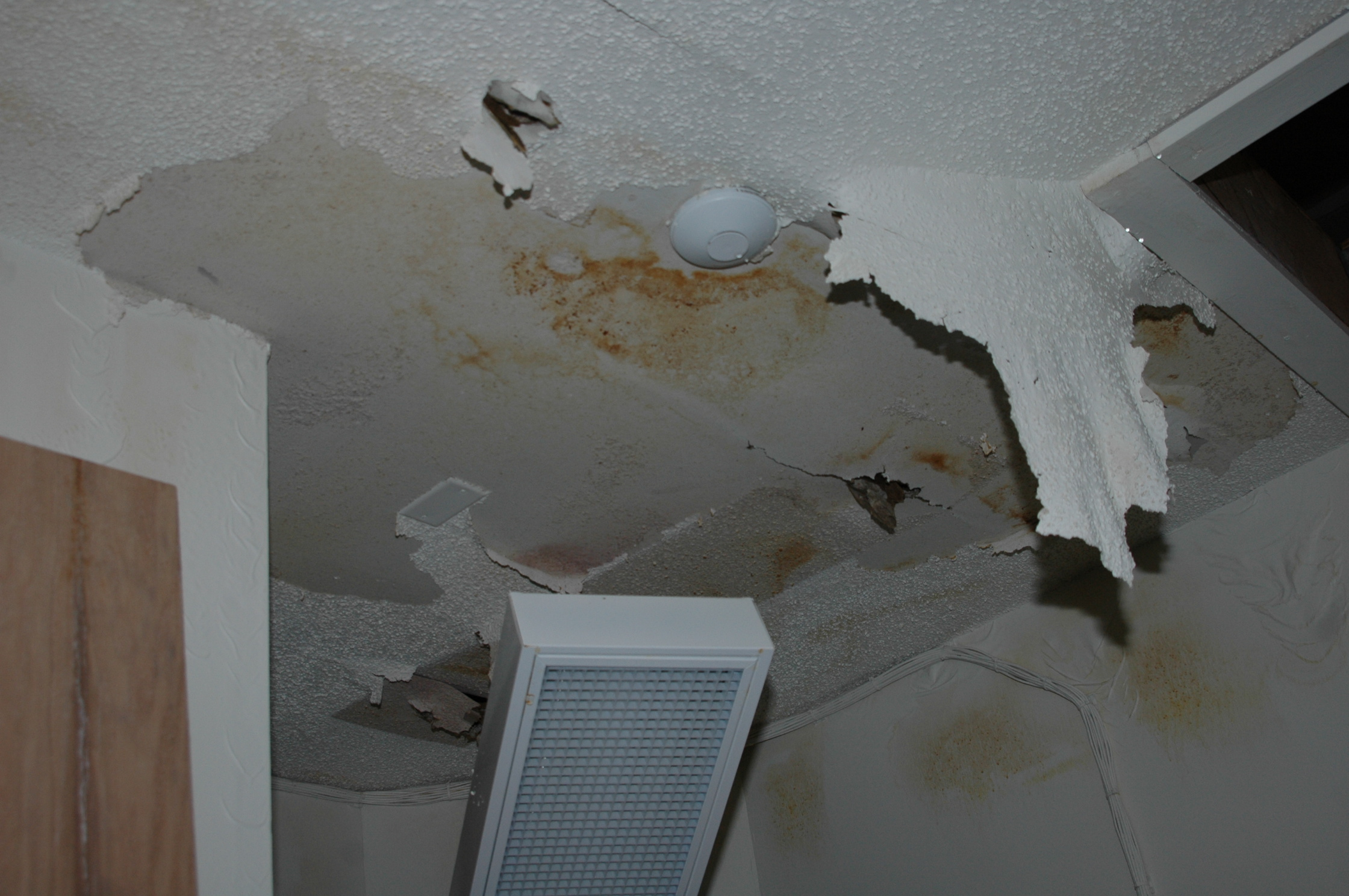 10 Places In Your Home Where Hidden Mold Can Be Found