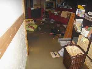 Basement-Sewer-Backup-What-to-Do