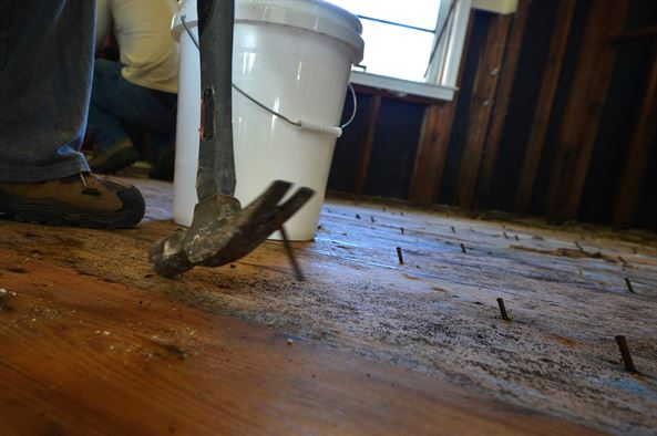 How Remove Mold From Wood Floors Restoration Masterfinder