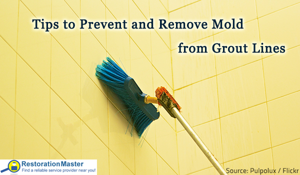 The best ways to remove mold from grout.