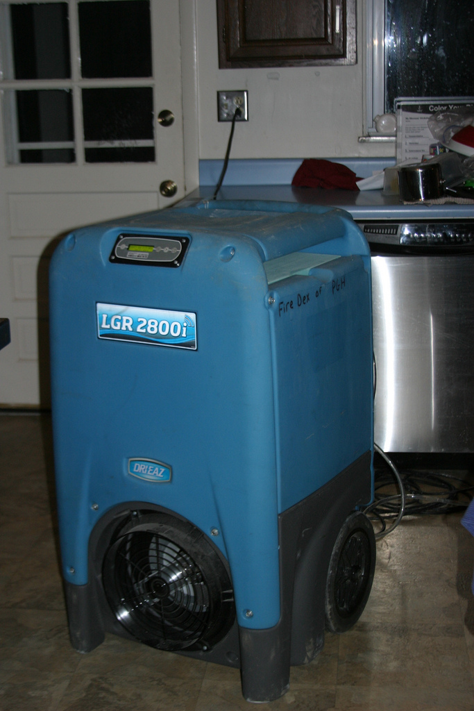 Can-Dehumidifiers-Remove-Mold