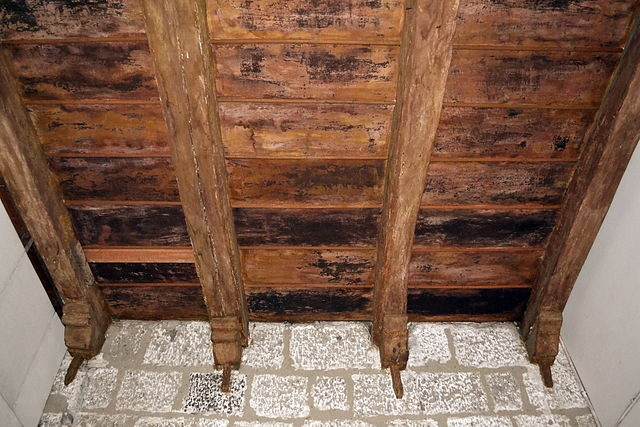 Prevent-Mold-in-Attic-and-Crawlspaces