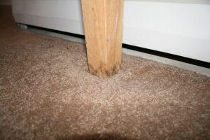 Water-Damage-Wood-Furniture
