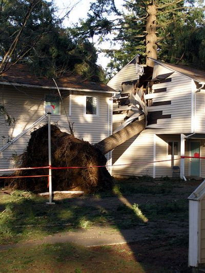 How to Protect your Home from the Effects of Spring Storms