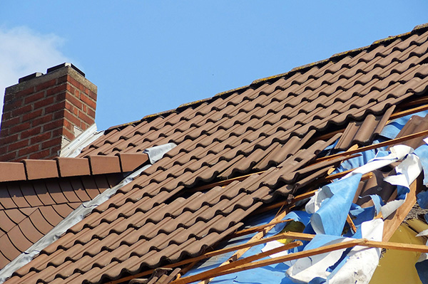 Roof damage is the most common type of storm damage .