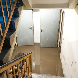 Main Signs of Water Damage in Your Basement