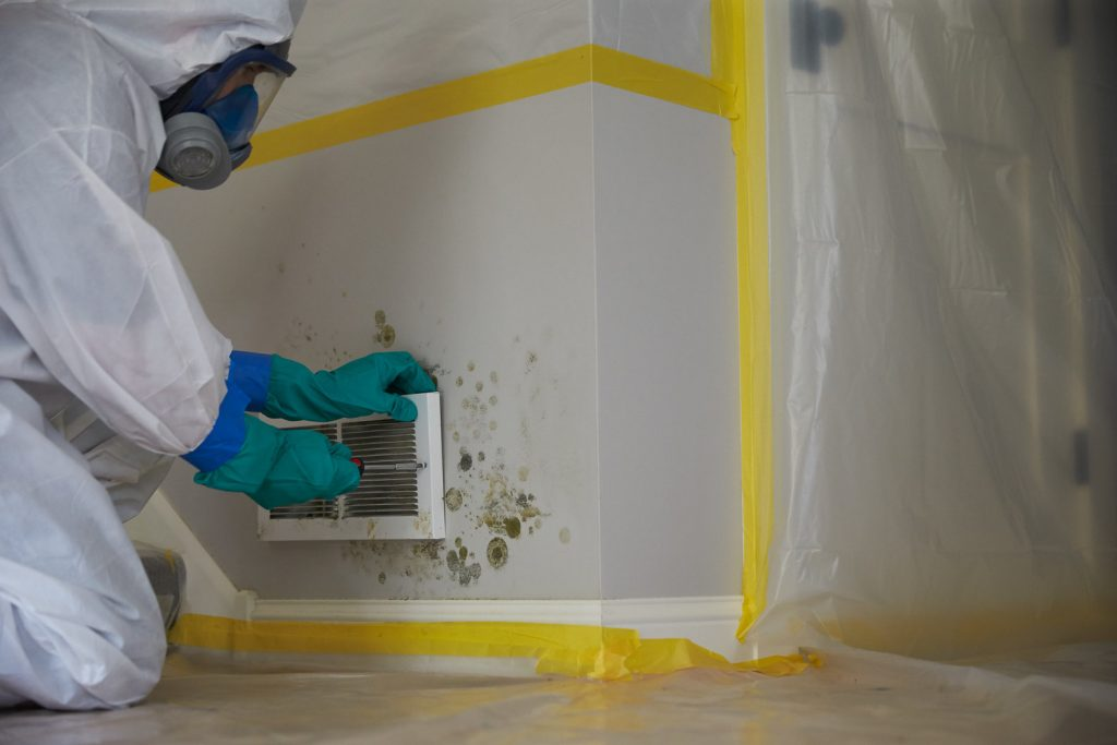 Mold-Remediation-Services-San-Diego-CA