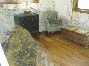Mold Remediation – Highlands Ranch, Colorado