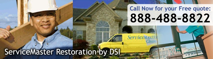 ServiceMaster DSI - Cleaning Services IL
