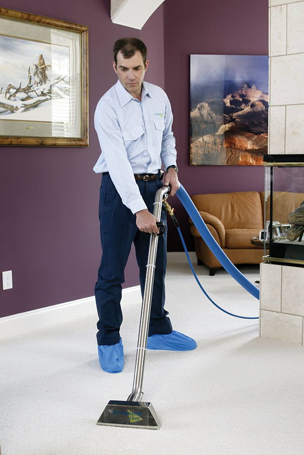 ServiceMaster Carpet Cleaning Services in Hempstead, NY