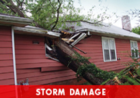 Storm damage in Dayton OH