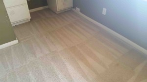 Carpet-Cleaning-Stafford-TX-after