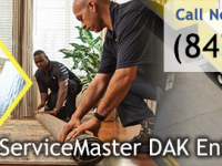ServiceMaster DAK Enterprises - Disaster Restoration and Cleaning Services in Lake Zurich, IL