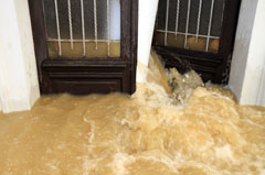Water damage restoration Arlington VA 22204