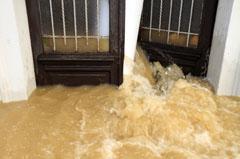 Water damage restoration Arlington VA 22204