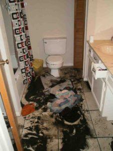 Sewage Cleanup Austin TX