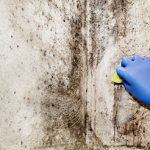 Mold Remediation Services in Owasso, OK