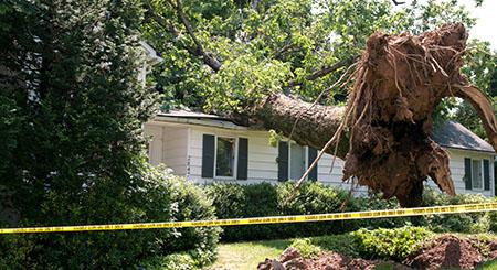 Wind Damage Restoration in Eastlake OH