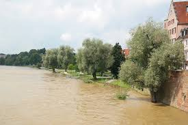 Water Damage Restoration Tampa FL