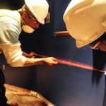 Biohazard and Trauma Scene Cleaning Services for Largo, FL