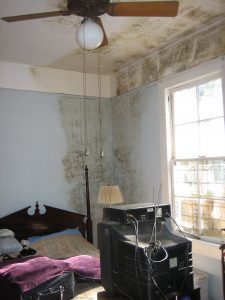Mold Damage in Bedroom