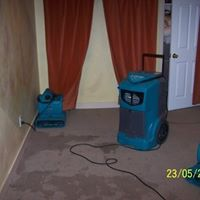 Drying the Carpet