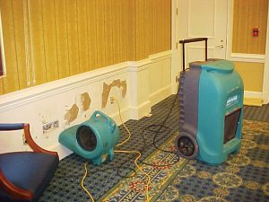 Mold Remediation / Mold removal for St. Charles, IL