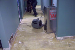 ServiceMaster Water Damage Restoration – Mt. Prospect, IL - Water Removal