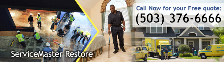 Disaster Restoration And Cleaning Services in Hillsboro, OR