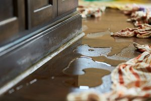 Preventing Future Water and Fire Damage
