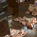 Hoarding Cleanup – Longview, 98632