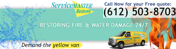 Demand the yellow van - ServiceMaster Professional Services - RMF