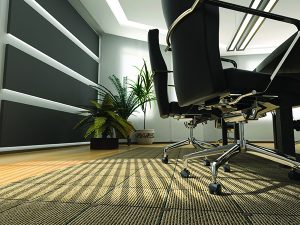 Carpet and Upholstery Cleaning in Silver Spring, MD