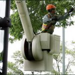 Tree-Trimming-Services-Niles-IL