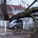 Storm Damage Restoration Tustin CA