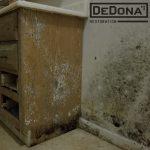 Mold Remediation Valencia CA