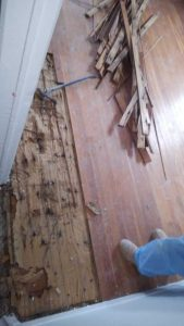 Water-Damage-Wood-Floors-Westerly-RI-Home