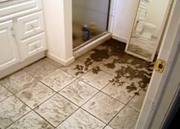 Mold-Remediation-for-Colorado-Springs-CO