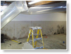 Mold Remediation Services For Huntington Beach, CA 92647