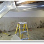 Mold Removal Services – Santa Fe Springs, CA