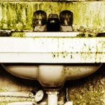 Mold-Remediation-Friendswood-TX