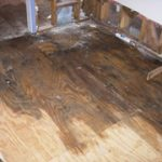 Mold Removal and Remediation is needed on this wooden floor in Stoneham, MA