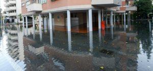 Water Damage Repair Palm Harbor FL