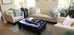 Commercial Upholstery Cleaning in Warren and Bridgewater Townships, NJ