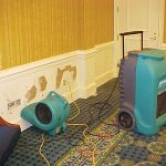 Mold Remediation for St. Charles, IL