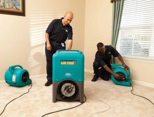 Carpet Drying - Water Damage Restoration in Milwaukee WI