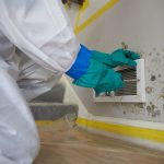 Mold Removal & Remediation in Ocean City and Egg Harbor Township, NJ by ServiceMaster of the Shore Area