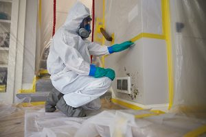 ServiceMaster professional performing mold removal and remediation services in a home, by ServiceMaster by Disaster Associates, Inc.